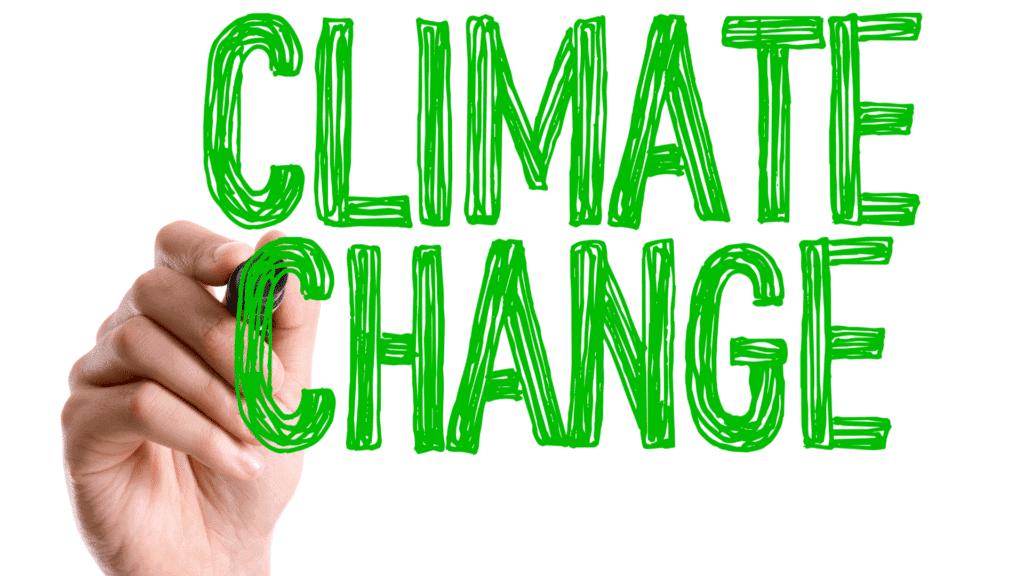 E-Scooter TIER wird Klimaneutral